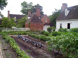 A Kitchen Garden In Colonial Williamsburg Brought To You By Cookies In Bloom And Hannah S Caramel Apples Colonial Garden Colonial Williamsburg Kitchen Garden