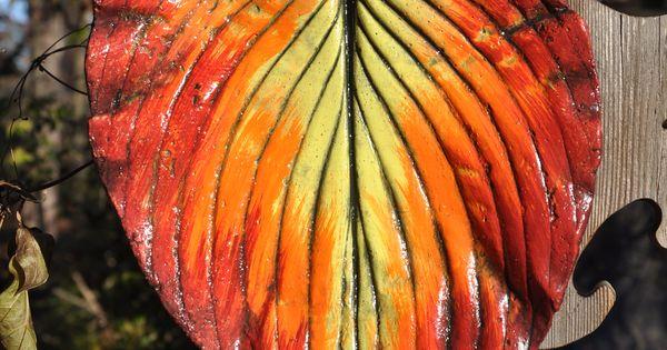 0cb3cefaaf1db638698d51b7cf7de06c Red Varieties Houseplants on ficus elastica varieties, cactus varieties, syngonium varieties, potatoes varieties, herb varieties, sunflower varieties, holly varieties, plants varieties, hydrangea varieties, succulents varieties,