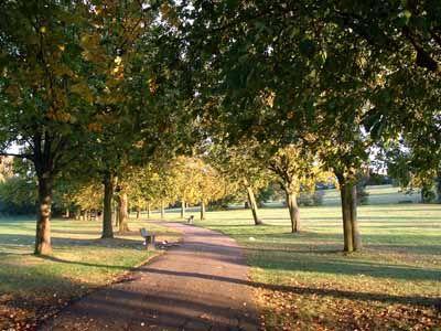 sunnyhill park