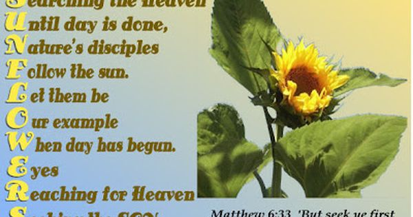 Retired Nature Weaver August 2012 Sunflower Quotes Sunflower Poem The Kingdom Of God