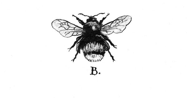 Cool bumble bee art, possibly for a tattoo