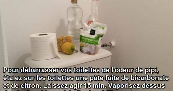Liminez odeur de pipi dans les toilettes m nage pinterest comment - Truc pour deboucher les toilettes ...