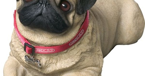 sandicast life size pug sculpture in fawn