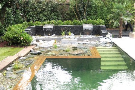 Natural Swimming Pools: Cleaning the Pool with Plants ...