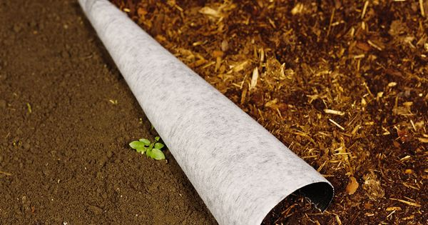 Landscape Fabric Under Deck : Landscaping weed shield landscape fabric gardener s