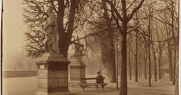 Eug ne atget french 1857 1927 jardin du luxembourg for Arbres jardin du luxembourg