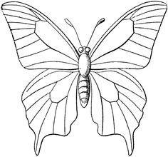 Riscos De Borboletas Para Pintar Butterfly Outline Butterfly