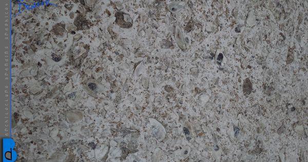 Close Up Of Tabby Stucco Wall Interior Finish Walls