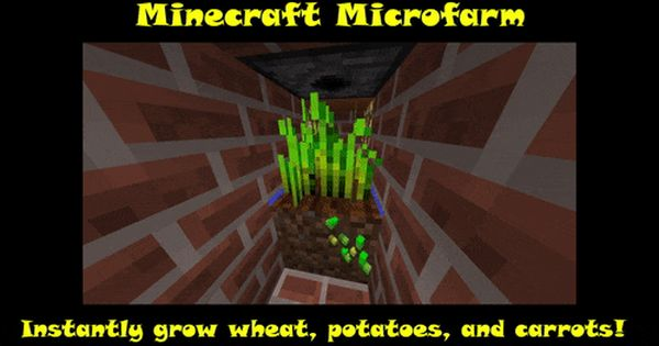 How To Make An Interesting Art Piece Using Tree Branches Ehow Minecraft Minecraft Creations Micro Farm