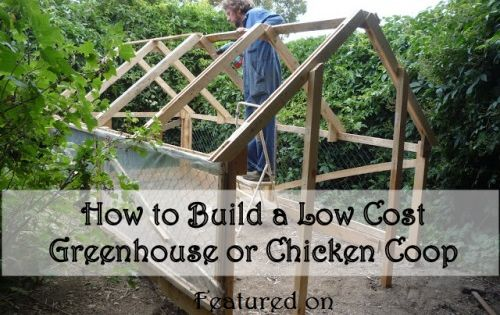 how to build a low cost green house or chicken coop