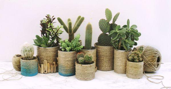 1come realizzare dei vasi per le piante grasse riciclando - Vasi per piante grasse ...