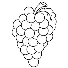 Top 25 Free Printable Lovely Grapes Coloring Pages Online Grape Drawing Fruit Coloring Pages Coloring Pages