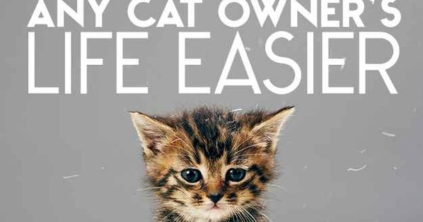 26 Hacks That Will Make Any Cat Owner's Life Easier OMG!!! A MUST pin for all my cat lover friends! :)
