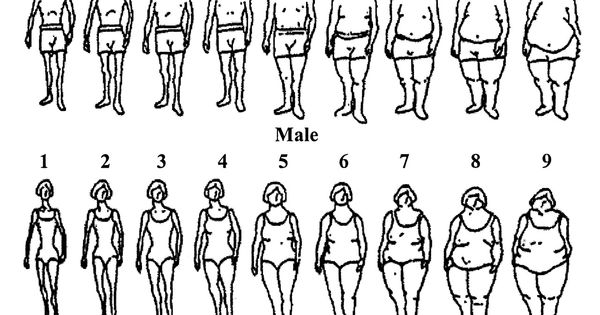 body image dissatisfaction dissertation Body image dissatisfaction refers to a person's negative perception of his or her own physical appearance historically, people have associated.