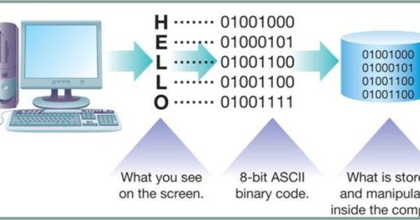 Learn binary code online