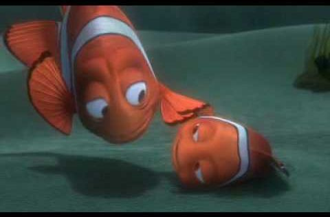 Reunion Clip Finding Nemo I Cried Finding Nemo Animation Studio Disney Facts