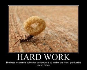 Even The Smallest Insect Is Motivated To Work Hard Keepgoing Inspiration Hard Work Quotes Work Quotes Funny Workplace Quotes