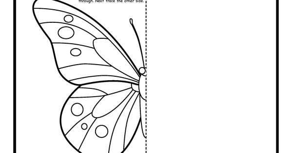 Contour Line Drawing Butterfly : Symmetry art activity free coloring pages for