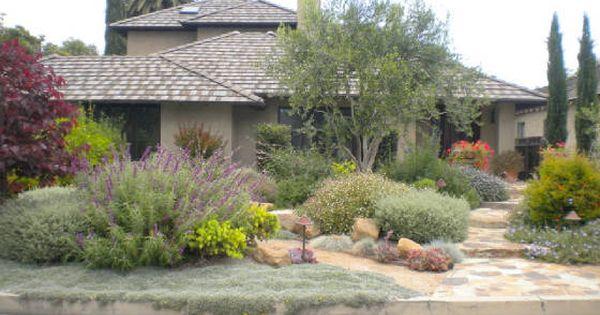 Drought Tolerant Garden Ideas | California Drought Tolerant Landscaping Ideas