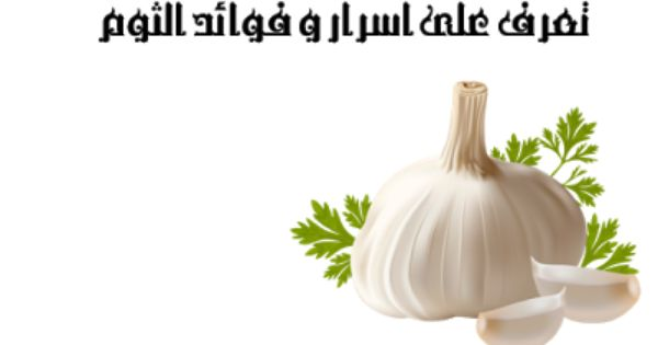 افضل فلتر مياه فى مصر اسعارفلاترالمياه 10 فوائد للثوم أول مره هتسمع عنهم اكتشفهم الأن Garlic Vegetables Health