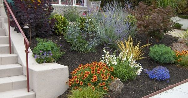 Low maintenance front yard landscaping low maintenance for Low maintenance drought resistant landscaping