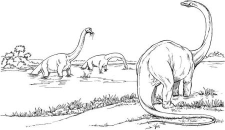 Brachiosaurus Find Out All About This Great Dinosaur Information And Pictures For Kids Dinosaur Coloring Pages Dinosaur Coloring Brachiosaurus