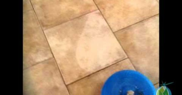 Grout Cleaning Ardmore