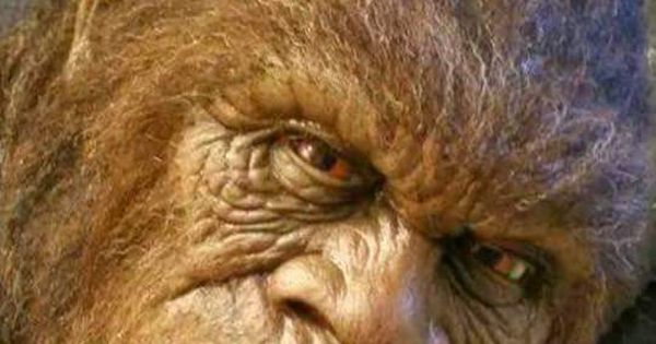 Dax Rushlow on | Embedded image permalink, Bigfoot and ...