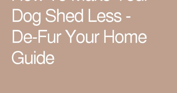 how to make your dog shed less   de fur your home guide moose