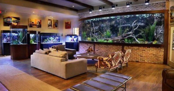 Landowaterandaquaria Theaquablog Aquariuminspiration