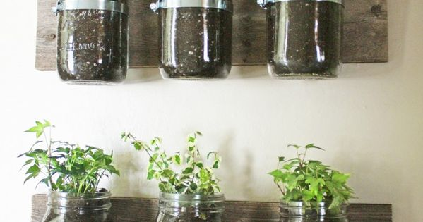 Mason Jar Wall Planter- Great idea for kitchen herb garden!