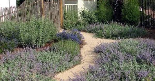 California 39 s own native landscape design escondido ca for Native garden designs