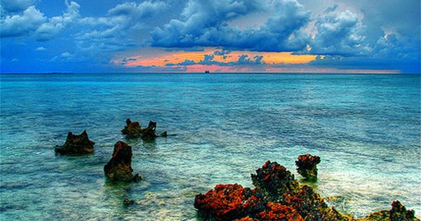 Cayman Island Reef, Grand Caymans. So beautiful.