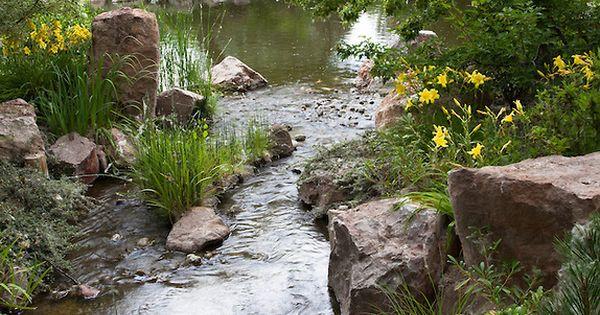 Pond edged with daylilies at sasebo japanese garden at rio for Koi garden rio di pusteria