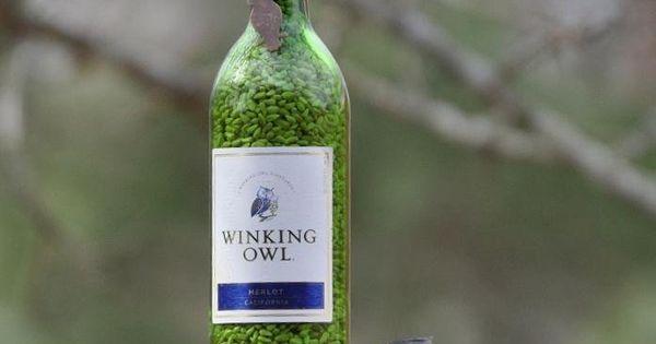 the garden-roof coop: diy wine bottle bird-feeders (I'd use beer bottles instead,