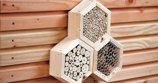 insektenhaus bauen abrigos para abejas pinterest garten. Black Bedroom Furniture Sets. Home Design Ideas
