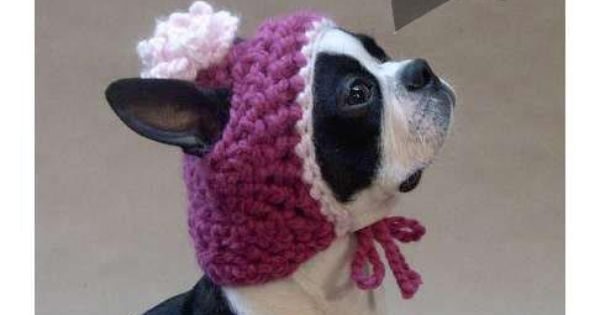 Crochet Pattern For A Hat For A Dog : Hand knitted hat for dogs #pets #dogs ~ Daisy~Belle Our ...