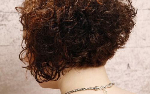 Short Curly Formal Hairstyle Dark Brunette Auburn Hair