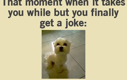 Funniest gif ever, gifs humor ...For more funny gifs visit www.bestfunnyjoke...