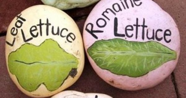 veggie rock garden markers. maybe flowers also?! cute idea... use painted rocks