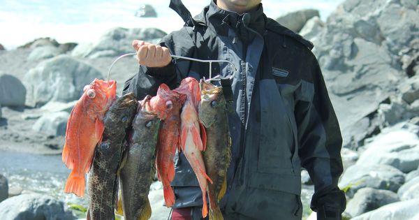 Big sur kayak fishing for rockfish and lingcod kayak for Big sur fishing