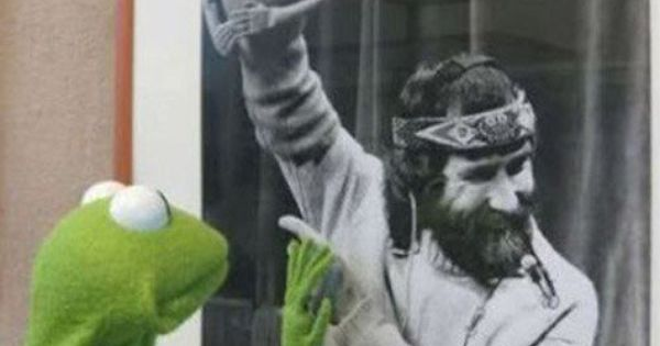 Aw. Kermit. Ok this isn't exactly art but it's a cute photograph