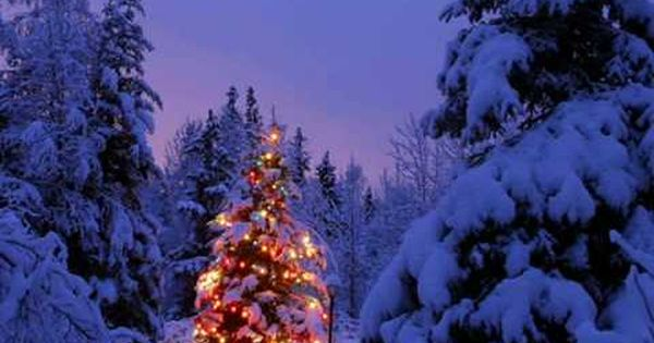 Coldplay Have Yourself A Merry Little Christmas Christmas Landscape Christmas Lights Christmas Scenes