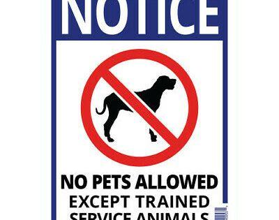 Notice No Pets Allowed Sign Plastic 14 X 10 Service Animals Sign Pet Signs Service Animal Pets