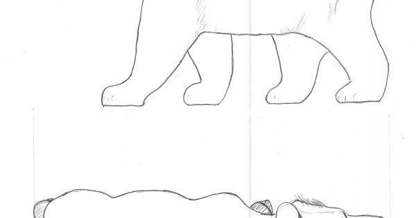 Bear Pattern Outline …