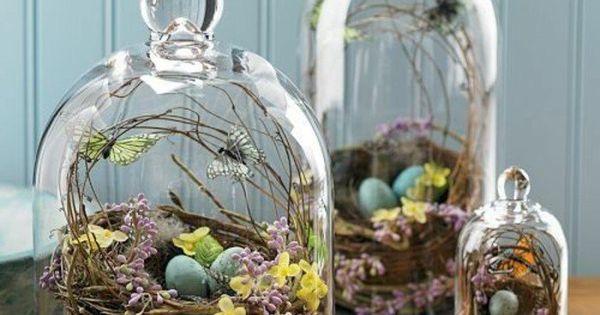 La cloche en verre en 43 belles photos avec beaucoup didées ...