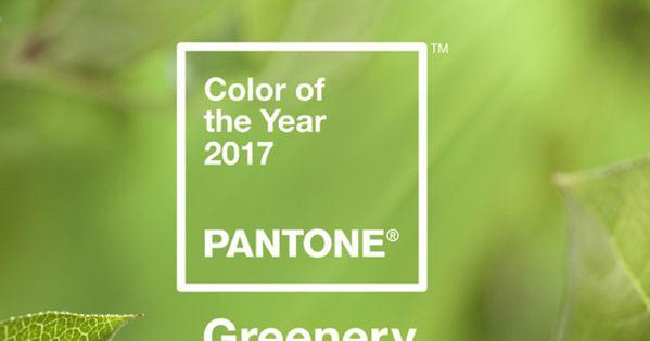Pantone d voile sa couleur de l 39 ann e 2017 pantone pantone color and p - Couleur de l annee pantone ...