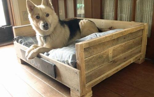 Reclaimed pallet wood bed Shipping pallets dog bed. I will do this