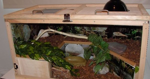 how to set up a ball python enclosure