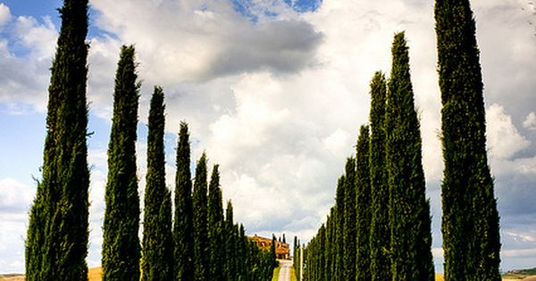 Tuscany, Italy Travel HotTipsTravel